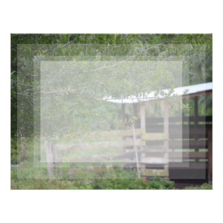 tree and old barn florida photo letterhead