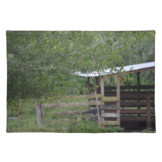 tree and old barn florida photo placemat