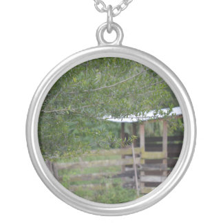 tree and old barn florida photo silver plated necklace