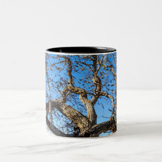 Tree and sky Two-Tone coffee mug