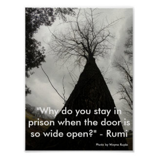 Tree and sky with Rumi quote Poster