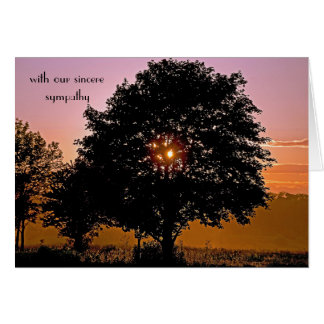 Tree and Sunset sympathy Card