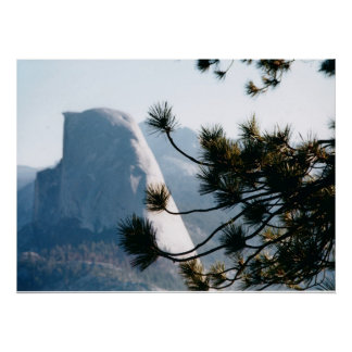 Tree at Half Dome Poster