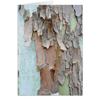 Tree Bark, Rustic Greeting Card