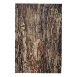 Tree Bark Texture Wood Wall Art