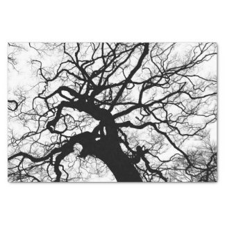 Tree Black and White Silhouette Tissue Paper