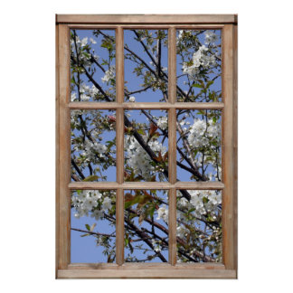 Tree Blossom from a Window Poster