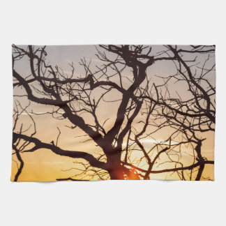 Tree Branches Dancing In The Sunlight Hand Towel