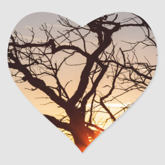 Tree Branches Dancing In The Sunlight Heart Sticker