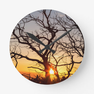 Tree Branches Dancing In The Sunlight Round Clock