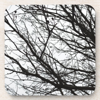 Tree Branches Drink Coaster