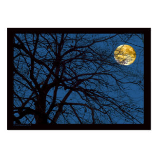 Tree Branches Full Moon Pack Of Chubby Business Cards
