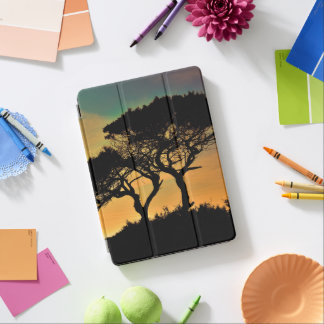Tree Branches Sunset Blossoms Destiny's Destiny iPad Pro Cover