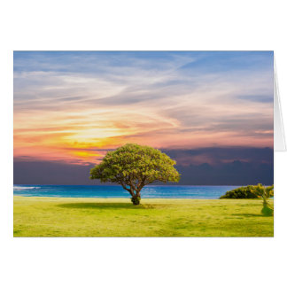 Tree by the Ocean Card