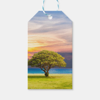 Tree by the Ocean Gift Tags