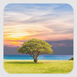 Tree by the Ocean Square Sticker