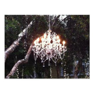 Tree Chandelier Postcard