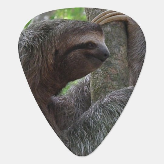 Tree Climbing Sloth Pick