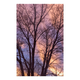 Tree Colors Of The Night Stationery