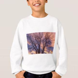 Tree Colors Of The Night Sweatshirt