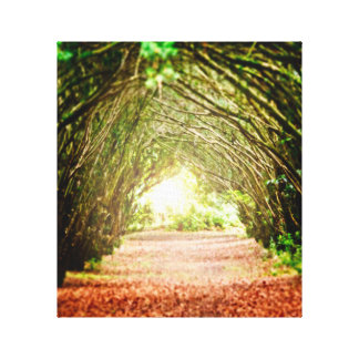 Tree Corridor Canvas Print