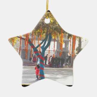 Tree Decorations Suraj Kund Nature Festival india Ceramic Star Ornament