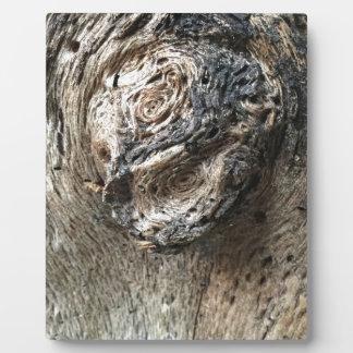 Tree Eyes Plaque