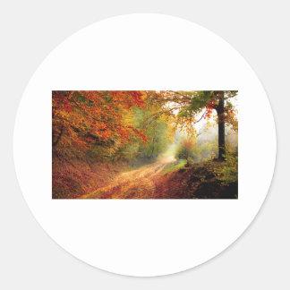 Tree Fall Nature Landscapes Sky Destiny Destiny'S Classic Round Sticker