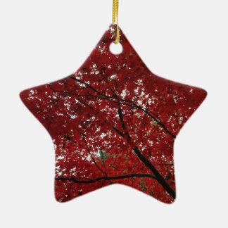 Tree Fall Season Red Brown Autumn Leaves Ceramic Star Ornament