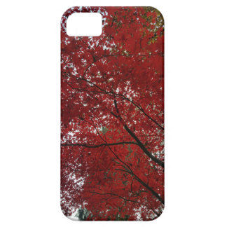 Tree Fall Season Red Brown Autumn Leaves iPhone 5 Cover