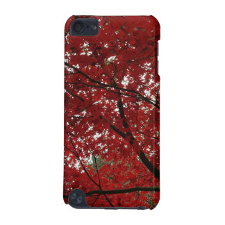 Tree Fall Season Red Brown Autumn Leaves iPod Touch (5th Generation) Case