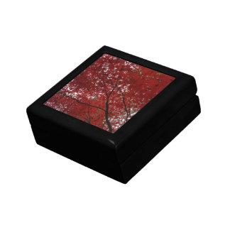 Tree Fall Season Red Brown Autumn Leaves Jewelry Box