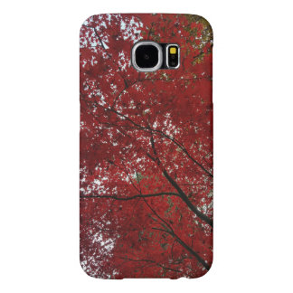 Tree Fall Season Red Brown Autumn Leaves Samsung Galaxy S6 Cases