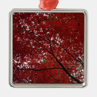 Tree Fall Season Red Brown Autumn Leaves Silver-Colored Square Ornament