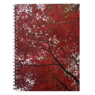 Tree Fall Season Red Brown Autumn Leaves Spiral Notebook