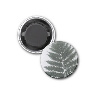 Tree Fern Leaf Silhouette Magnet