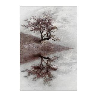 Tree fine art