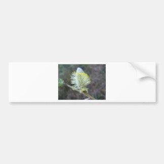 Tree flower 1 bumper sticker