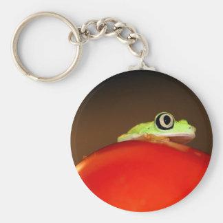tree frog basic round button keychain