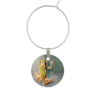 Tree Frog Climbing Screen Photograph Wine Charm