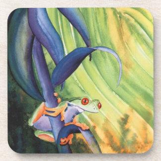 Tree Frog Coaster
