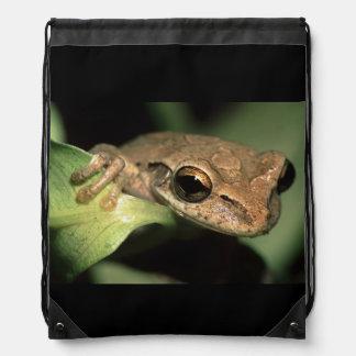 tree frog drawstring bags