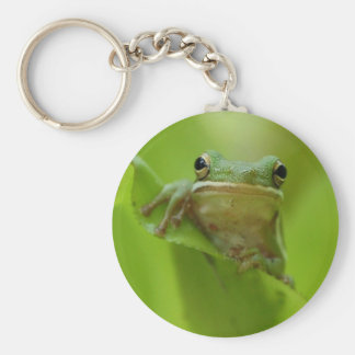 Tree Frog Green Customize jump Basic Round Button Keychain