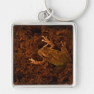 tree frog in moss animal design key chain