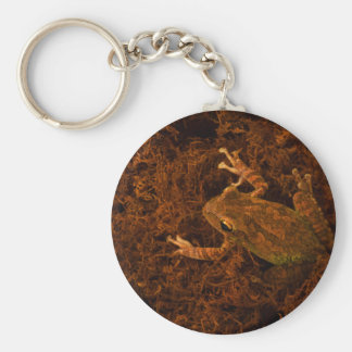 tree frog in moss animal design keychains