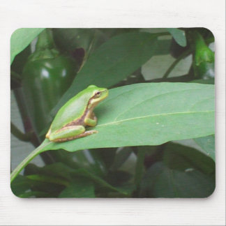 tree frog in the peppers mouse pad