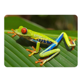 Tree Frog 5x7 Paper Invitation Card