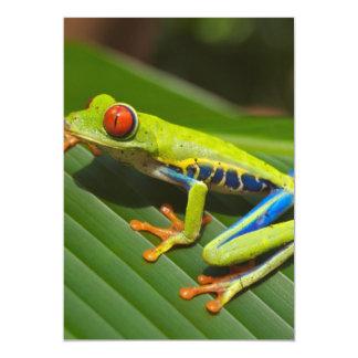 Tree Frog Invitation