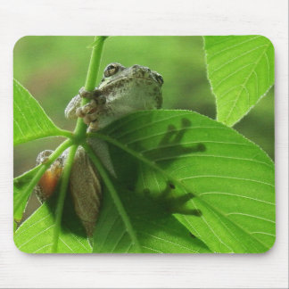 Tree Frog Leaf Shadows Mouse Pad