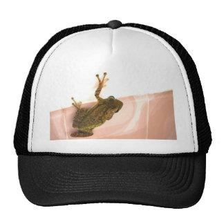 tree frog leg up stylized pink animal hats